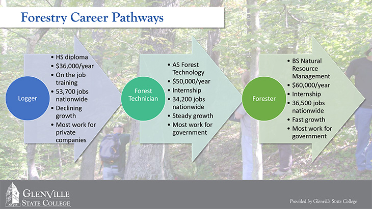 Forestry Career Pathways
